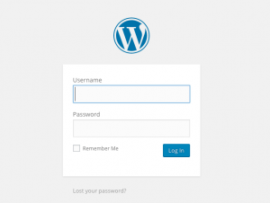 Login-300x226 WordPress Basic Training for Clients