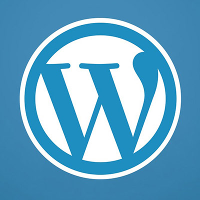 WordPress Basic Training For Clients