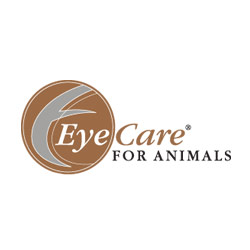 Davidson Belluso Sets Its Sights On Eye Care For Animals Website
